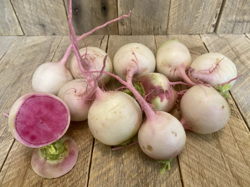 Winter Radishes (Red Meat)