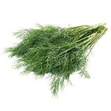 Fresh Herbs (Fennel Leaves)