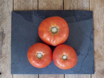 2lb - Red Tomatoes (Slicing)