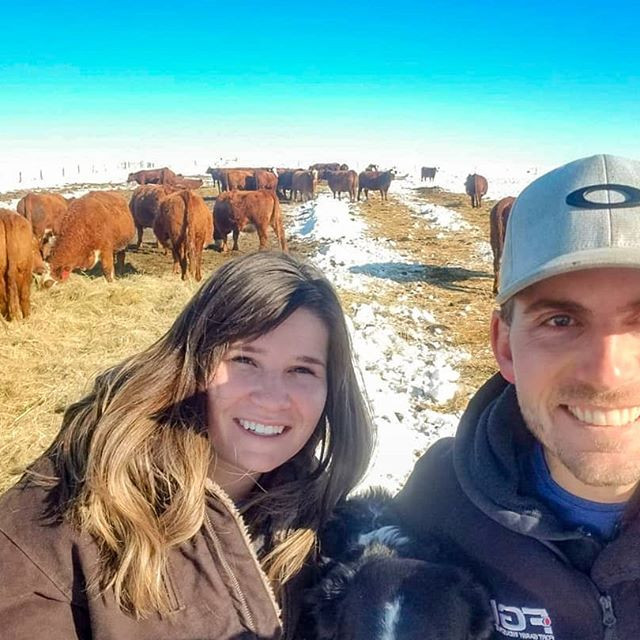Sam and Michelle checking Cows and Calves