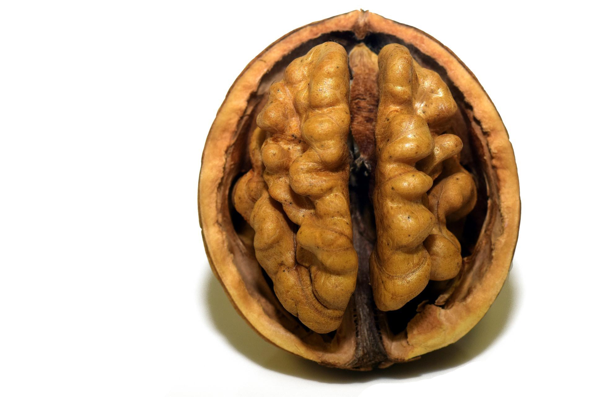 Organic Crispy Walnuts - 1qt