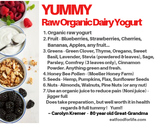 Yummy Raw Organic Dairy Yogurt