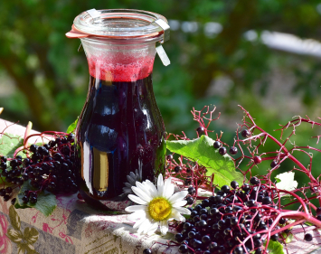 Elderberry Syrup - 32oz