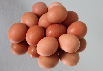 Dozen Mixed Eggs