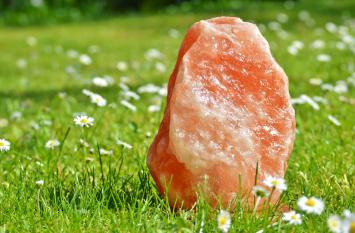 Himalayan Mineral Rock Salt - Individual Piece