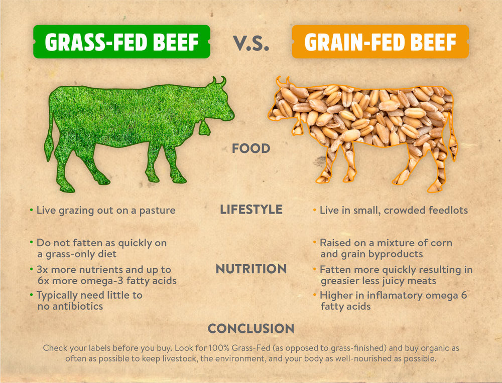 Evergreen Grass-fed, Grass-Finished Family Beef Pack