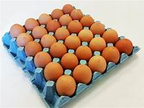 One Dozen Hutterite Eggs