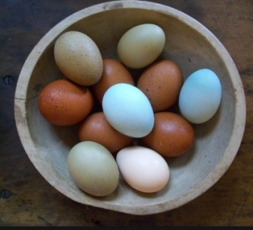 Dragonfeather Farm Pastured Eggs