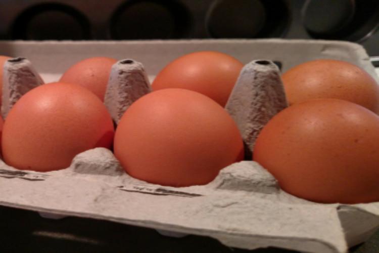 One Delightful Dozen Eggs