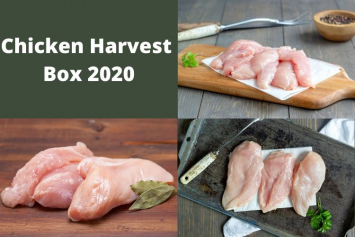Chicken Harvest Box