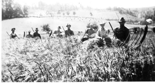 Wheat cutting 1942 (R.O., Jr., second from right, was home on leave from the Army just in time to help