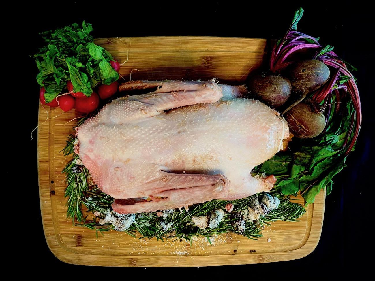 Thanksgiving Goose