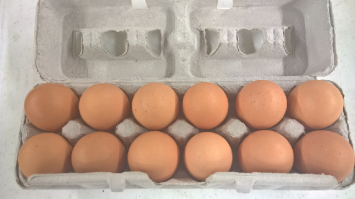 Free Range Amish Brown Eggs 1 dozen