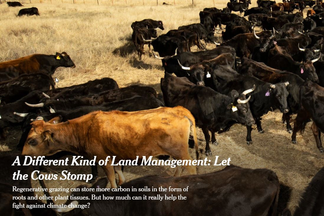 Article Worth Reading #1 - A Different Kind of Land Management