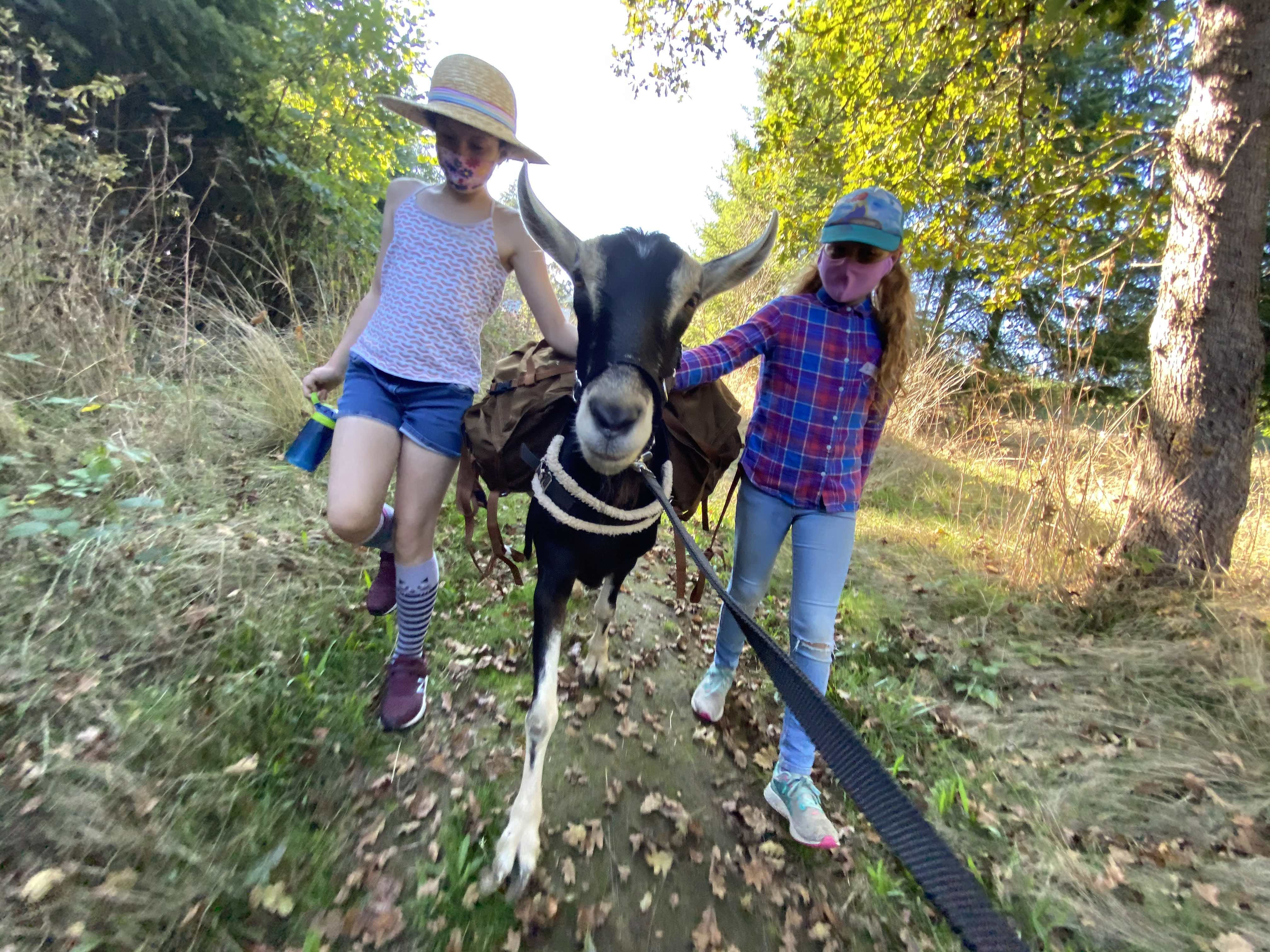 Tour of Fraga Farm & Picnic with Carl the Goat!