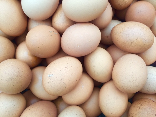 Misleading Egg Labels - Why Pastured Eggs Are Better