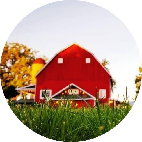 Meadows Homestead and Farm