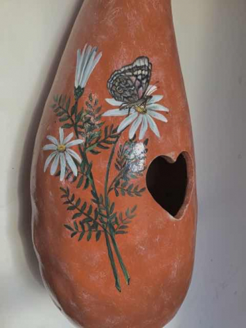 Painted Butterfly Gourd