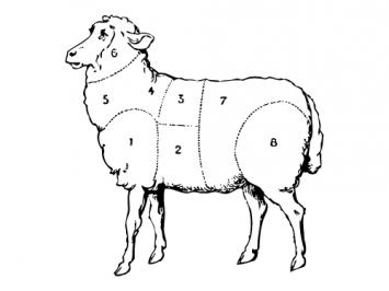 Whole Lamb Deposit