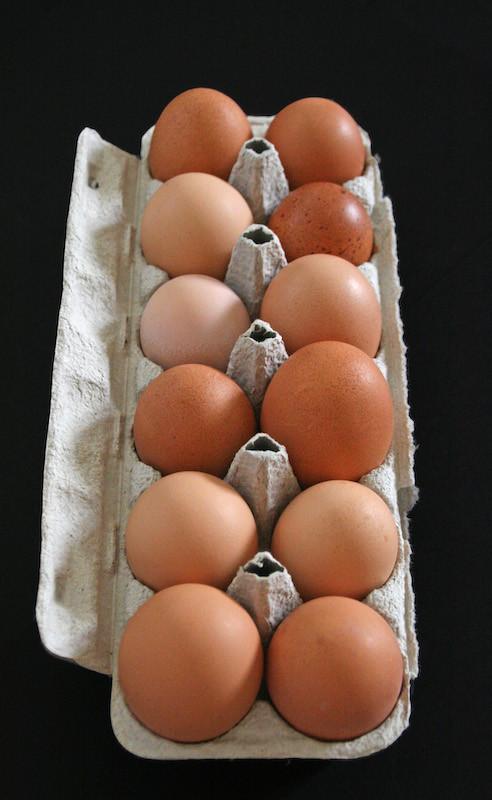 Brazy Creek Farm - Pasture Raised Eggs