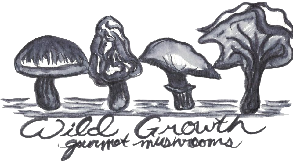 Wild Growth Gourmet Mushrooms