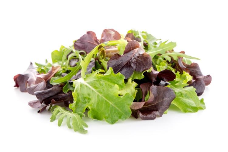 Lettuce Mix, Spring - Full