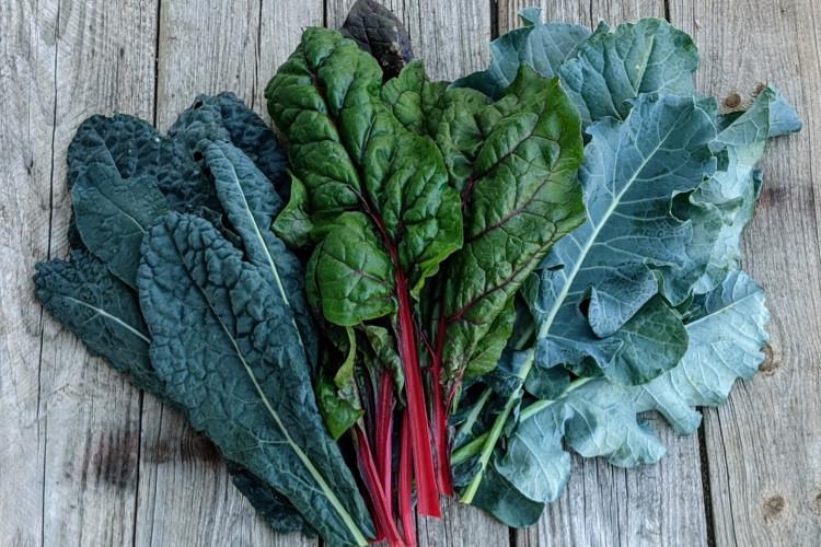 Mixed Variety Greens - Bulk - 5 lbs