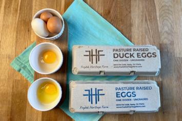 Duck Egg Challenge Pack