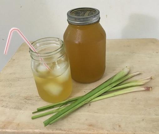 Lemongrass Tea-Unsweet