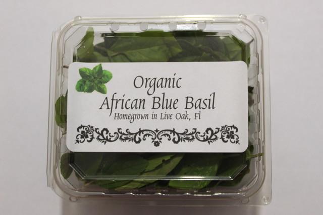 African Blue Basil