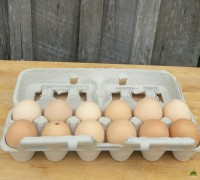 Chicken Eggs- Soy Free- Eden Farms