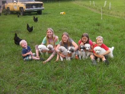 Farm Report- 4/24/15