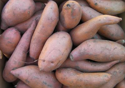 Sweet Potatoes, 40lb Box #1s