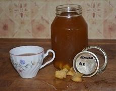 Water Kefir, Ginger Ale