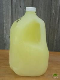 Whey - Gallon