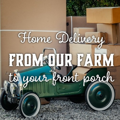 Home Delivery Subscription