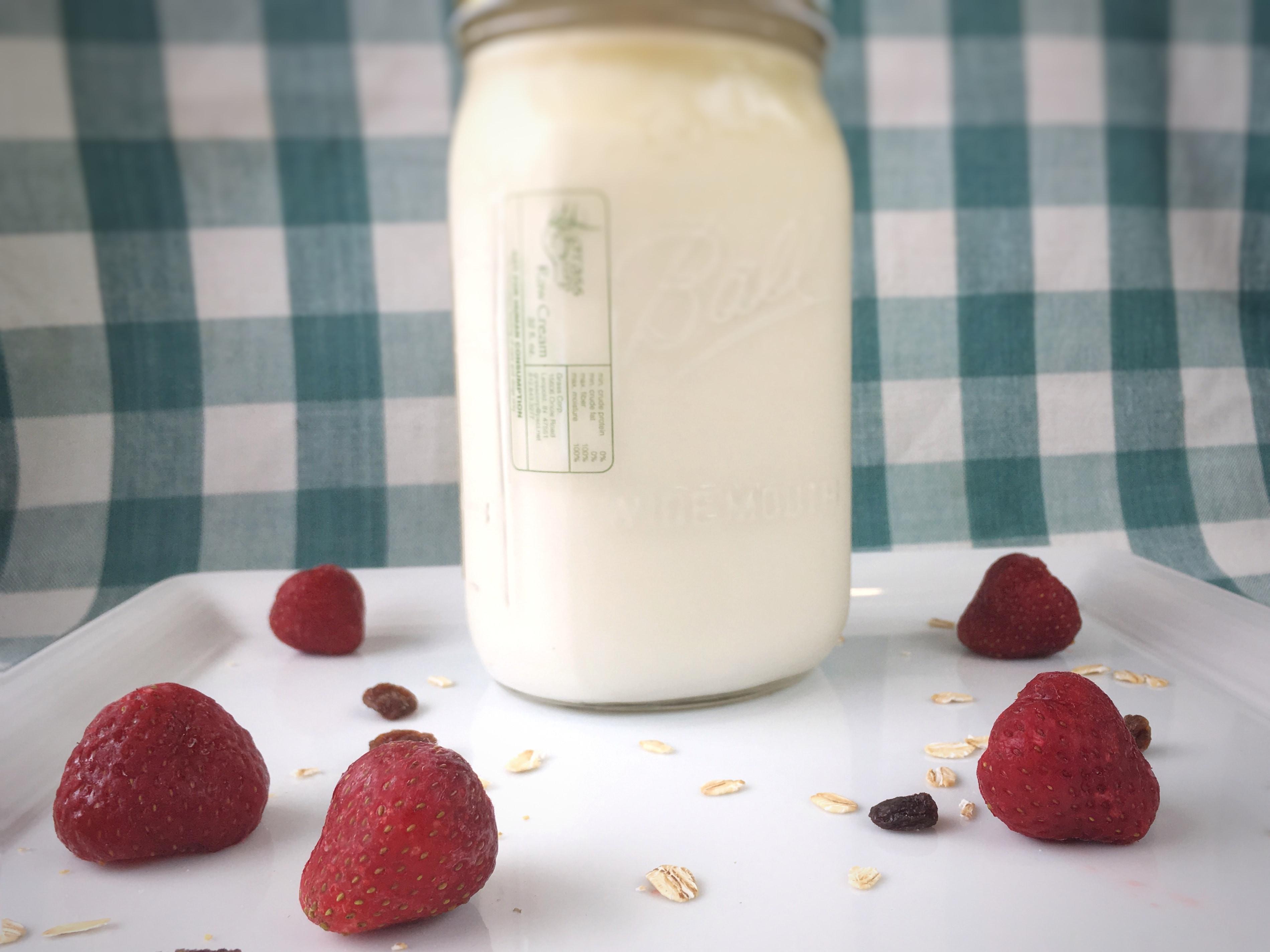 Dairy - Plain Yogurt