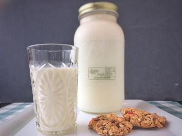 Dairy - Milk