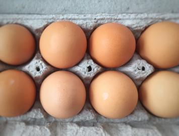 Eggs - Medium