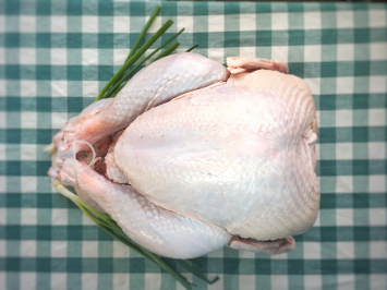 Turkey - Large