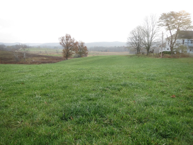 IRELAND IN OHIO: DEEP GREEN  PASTURES IN NOVEMBER, Due to spreading chicken manure in September, suggests the emerald island of Ireland.