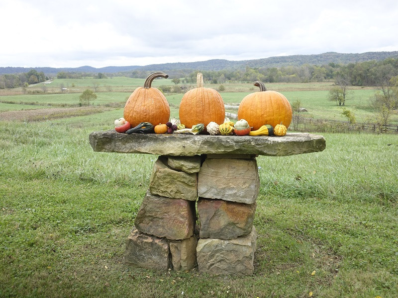 FALL SPIRITS: THOUGH A HOT SEPTEMBER IS MAKING FOR MUTED COLORS IN OCTOBER, FALL SPIRITS ARE STILL IN THE AIR.