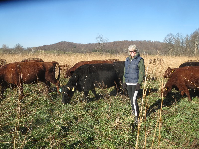LANGUAGE & GRASSFED MEATS: THE MOST IMPORTANT INGREDIENT TO GOOD GRASSFED MEATS IS NOT A BEAUTIFUL SHEPHERDESS OR GREAT GREEN GRASS, THOUGH INVALUABLE, BUT CAREFULLY CHOSEN WORDS.