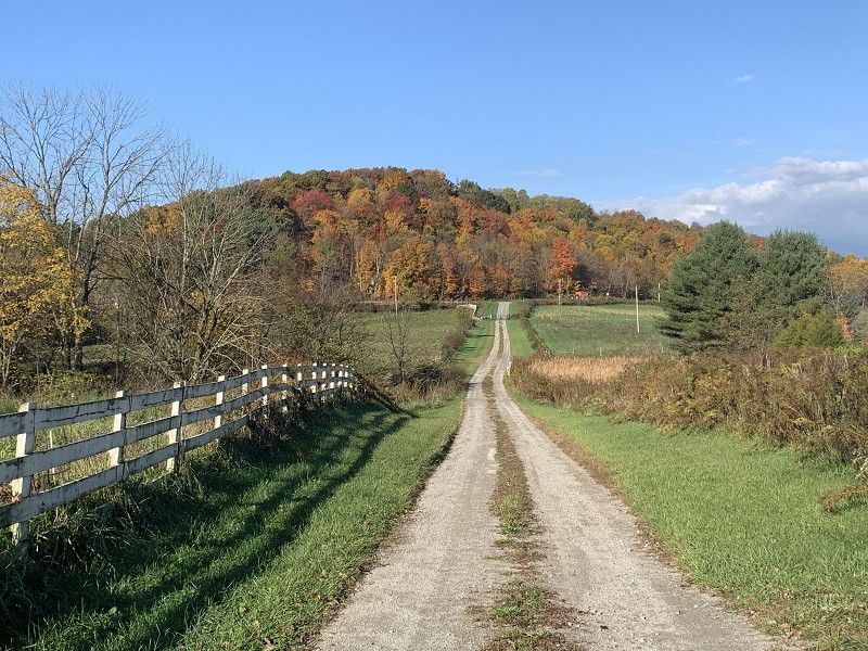 Rural Symphony
