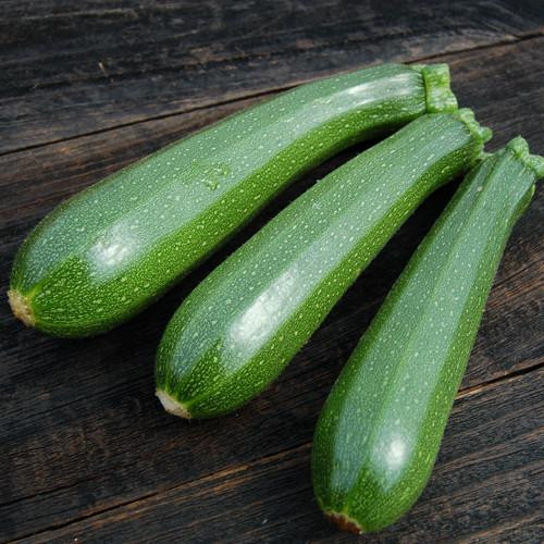 Certified Organic Zucchini