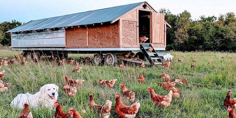 Join Our Farm Tour!