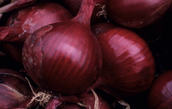 Red Candy Apple Onions