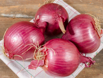 Certified Organic Red Onions