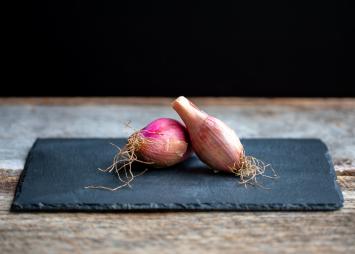 Organic Shallot