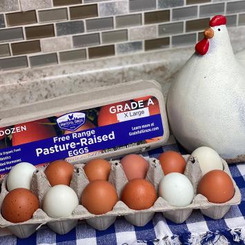 1 Dozen X-Large Grade A Eggs